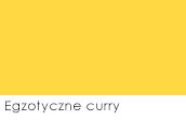 Egzotyczne curry